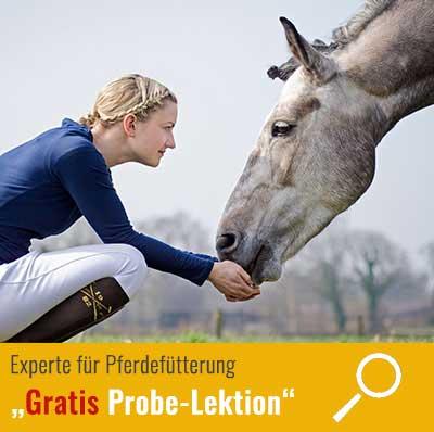Probe-Lektion: Experte-Pferdefütterung